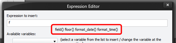 Expression Editor - Function Hint